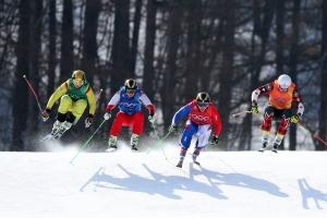 20180221 프리스타일 스키 남자 크로스005