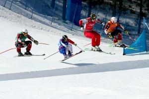 20180221 프리스타일 스키 남자 크로스015